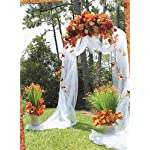 Firefly-Imports-Homeford-Metal-Steel-Arch-55-by-90-Inch-White