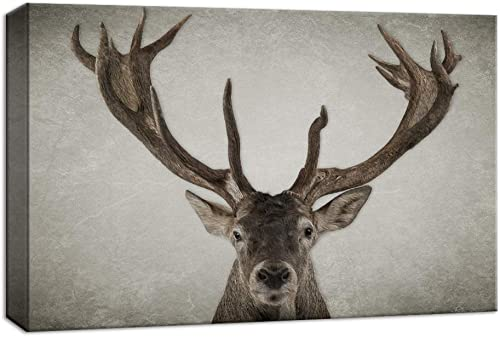 NWT Canvas Wall Art Wildlife Deer