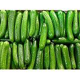 30+ ORGANICALLY GROWN Persian Beit Alpha (A.k.a. Lebanese) Cucumber Seeds Heirloom NON-GMO Crispy Fragrant From USA