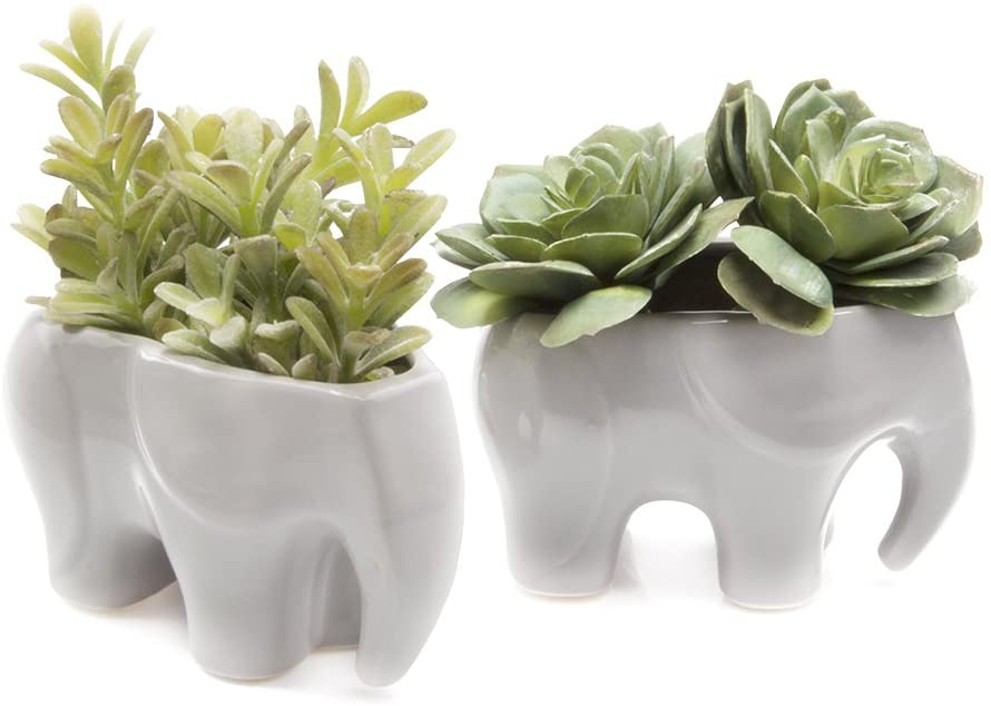 Chive – Set of 2 Animal Pot Elephant Shape Succulent Cactus Planter Pot, 3 Ceramic Air Plant, Flower and Plant Container, Cute Animal Mini Pot for Indoor Outdoor Garden and Home Decor, Bulk Grey