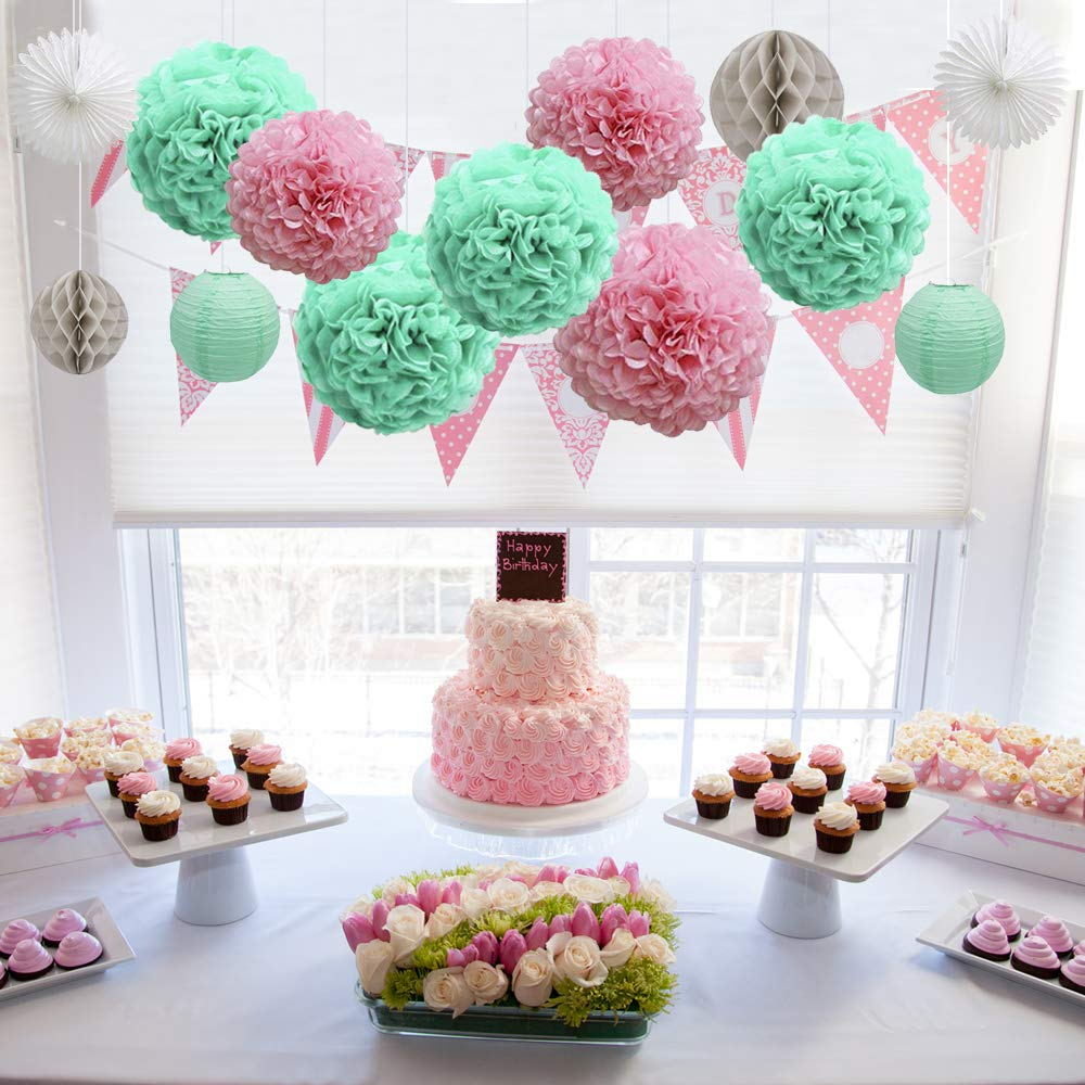 Pink Hanging Paper Fans Paper Tissue Pom Poms Paper Lantern Honeycomb Balls First Birthday Girl Princess Theme Decorations Kit Party Supplies Backdrop Pack of 16