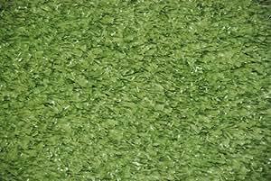 """""""Heavy Turf"""" Bound Indoor/Outdoor Green Grass Area Rug 6'x8'"""