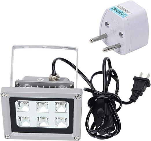 Shoieor Lámpara de luz de curado de Resina UV for Accesorios de ...