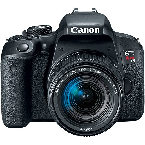 Buy what is the best canon camera for video