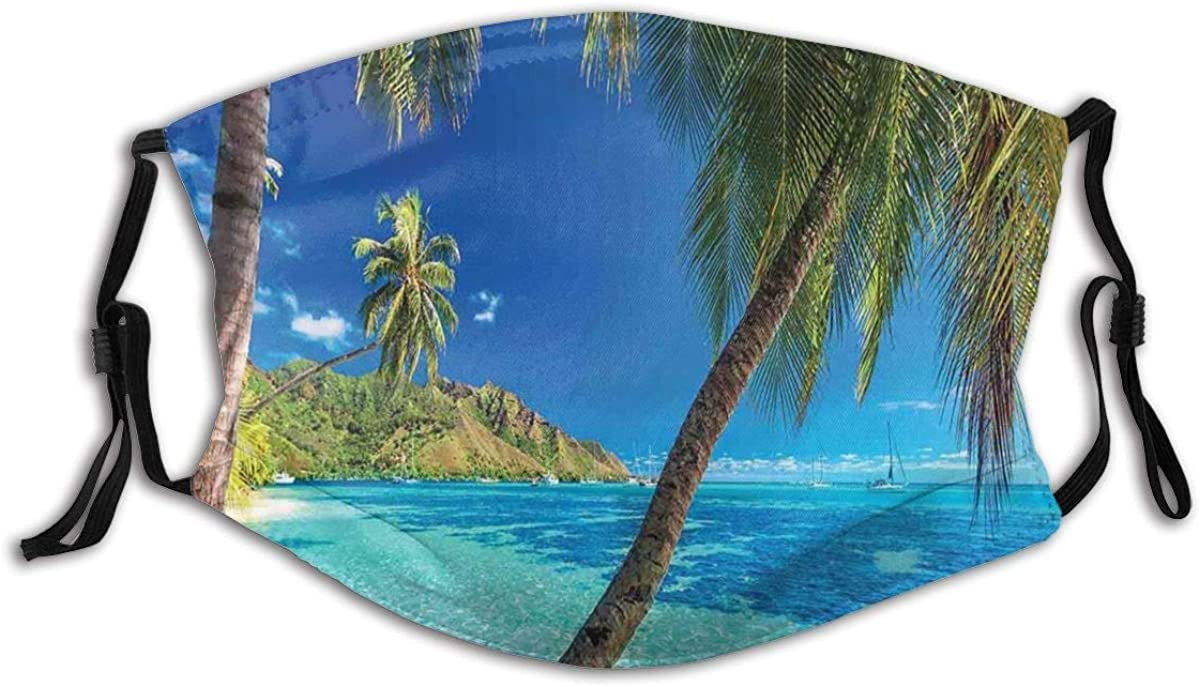 Adult Mask Image of A Tropical Island with The Palm Trees and Clear Sea Beach Theme Fabric Cotton Face Masks Washable Cloth Masks for Men Women Cycling Camping Travel