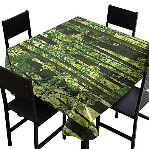 haommhome Dustproof Square Tablecloth Nature Refreshing Lush Maple Forest Table Decoration W63 xL63 Great for Buffet Table