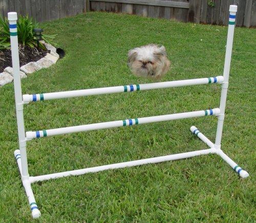 Dog Agility Single Double Bar Jump by Weave Poles