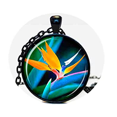 Amazon the bird of paradise pendant the bird of paradise the bird of paradise pendant the bird of paradise necklace the bird of paradise jewelry aloadofball