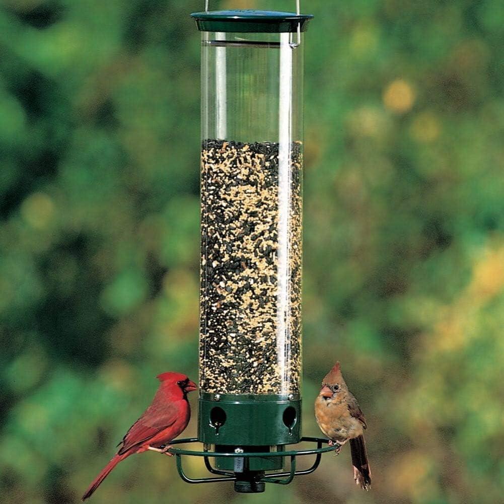 Los mejores comederos para pájaros de exterior de 2020 (análisis) 4