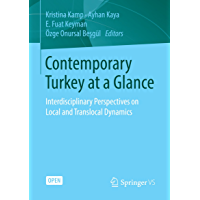 Contemporary Turkey at a Glance: Interdisciplinary Perspectives on Local and Translocal Dynamics (English Edition)