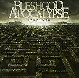 Fleshgod Apocalypse - Labyrinth [Japan CD] COCB-60100