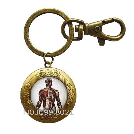 Amazon.com: Cuerpo humano anatomía llavero médico enfermera ...