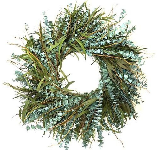 Preserved Eucalyptus (Texas Sage 17 Inch Dyed Preserved Eucalyptus Wreath Candle Ring Spring Summer Interior Decorative Accessory)