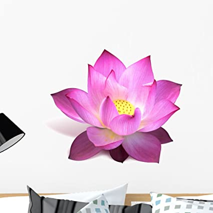 Amazon Wallmonkeys Magenta Lotus Flower Wall Decal Peel And