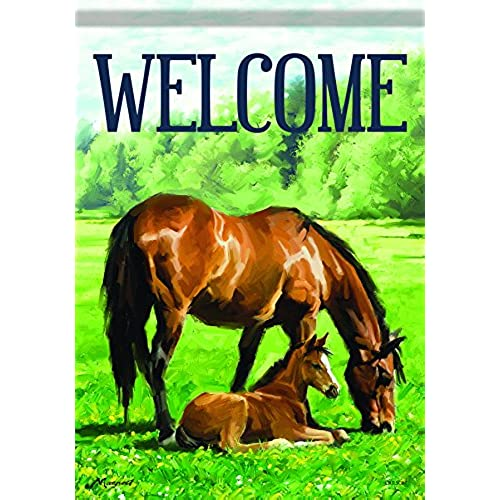 Exceptionnel Carson Home Accents Flagtrends Classic Garden Flag, Welcome Mother U0026 Foal