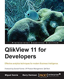 QlikView 11 for Developers: Effective analytics techniques for modern Business Intelligence by [García, Miguel, Barry Harmsen]