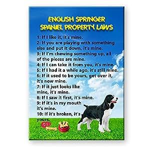 English Springer Spaniel Property Laws