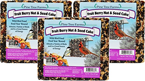 - Pine Tree Fruit Berry Nut and Seed Cake, 2-Pound (Pack of 3)