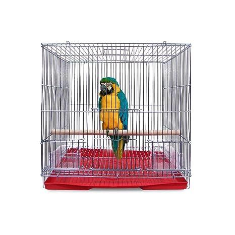 AZXAZ Jaula de Transporte para pájaros de Hierro galvanizado con ...