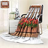 YOYI-HOME Duplex Printed Blanket Comfort Warmth SoftOld European Windows with Shutters and Flowers Pots Image in Rurals Boho Brown White Red Anti-Static,2 Ply Thick,Hypoallergenic/W31.5'' x H47