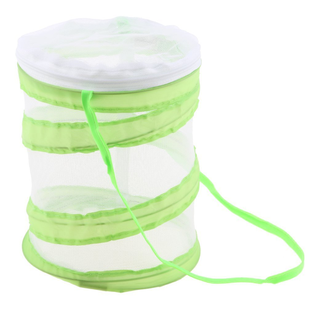 SGerste 14 x 15cm/30 x 35cm Praying mantis/Stick Insect/butterfly/Cylinder Style Pop Up Cage Green - 14x15cm