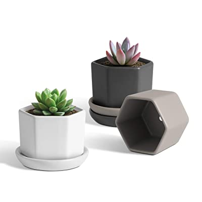 T4U 2.75 Inch Small Ceramic Succulent Planter Pots with Saucer Set of 3, Matt Hexagon Porcelain Handicraft as Gift for Mom Sister Aunt Best for Home Office Restaurant Table Desk Decoration: Garden & Outdoor