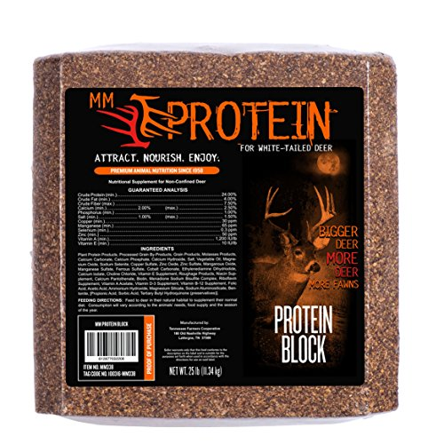 MONSTERMEAL MM Protein Block
