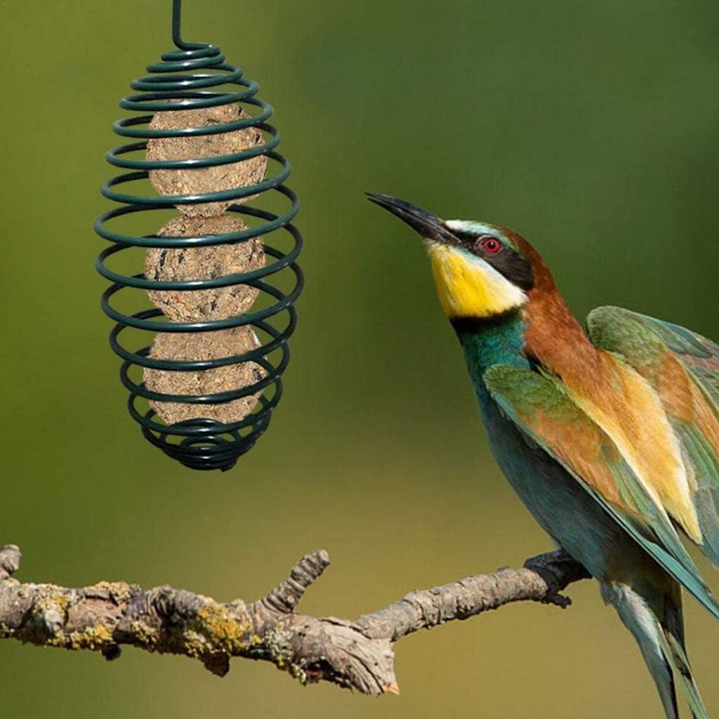 Yyooo R/écipient /à suspendre en m/étal avec ressort en forme de spirale Cage ext/érieure pour oiseaux sauvages