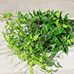 Shuohu-Clematis-Weeping-Willow-Leaves-Plant-Wall-Landscape-Arrangement-1Pc4-Branches-Artificial-Green-Leaves-Fake-Plant-Home-Wedding-Garden-Decor