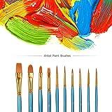 Acrylic Paint Brush Set, 5 Packs / 50 pcs Nylon Hair Brushes for All Purpose Oil Watercolor Painting Artist Professional Kits
