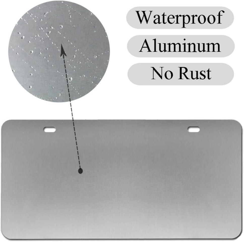 Lss Trading Utah Placa de matr/ícula para Coche Metal, 15 x 30 cm