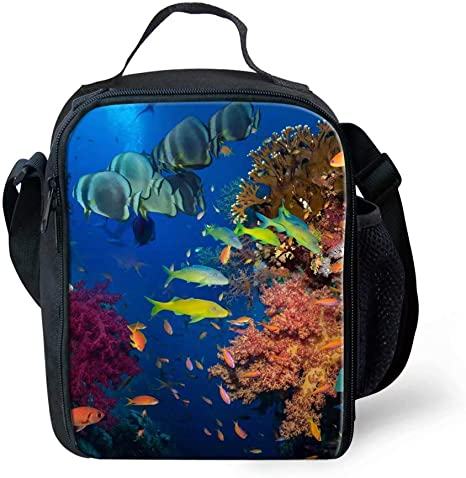 Ocean Lunchbox Bags For Kids Toddlers Outdoor Zoo Picnic School Bag Kitchen Dining