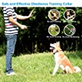 Dog Training Collar Shock Collar for Dogs with Rechargeable and Waterproof Dog Collar No Barking with Beep Vibration and Shock Harmless E Collar for Small Medium Large Dog, 1000ft Remote control