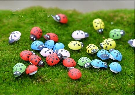 jardin miniatura Adv One Jardn Miniatura Mini Escarabajos Miniatura Macetas