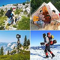 ENKEEO - 2 Pack Bastones de Senderismo Trekking Ultraligero (Fibra de Carbono, Corcho Artificial, 3 Tramos Extensibles, EVA Sweat Free, Actividades Al Aire Libre): Amazon.es: Deportes y aire libre