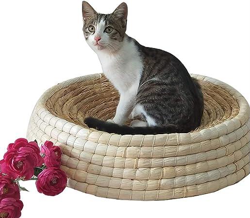 Lispeed Cama para Gatos Cesta para Gatos Sofá para Gatos Cama para Perros Cueva para Gatos para Todos los Gatos y Perros pequeños en Forma de Maceta Diseño 40cm: Amazon.es: Hogar