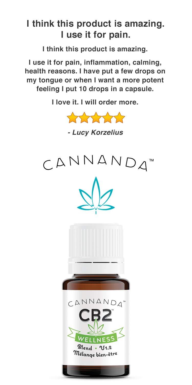 CB2 WELLNESS: CBD Oil/Cannabidiol Activator (3800mg) - Activates the  Endocannabinoid system -