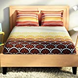SPACES Intensity Brown 180 TC Cotton King Bed sheet With 2 Pillow Covers