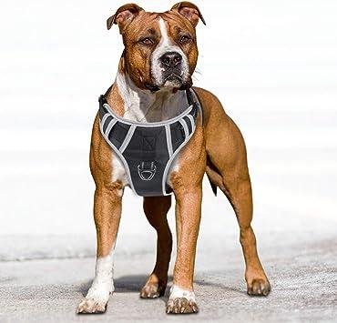 Idepet Pas de traction pour chien 2019 harnais pour animaux de compagnie r/éfl/échissants et r/églables avec poign/ée souple Contr/ôle facile pour les chiens de taille moyenne