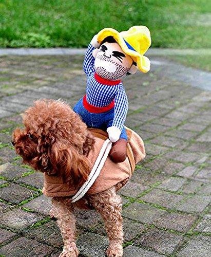 Vevins Cowboy Dog C