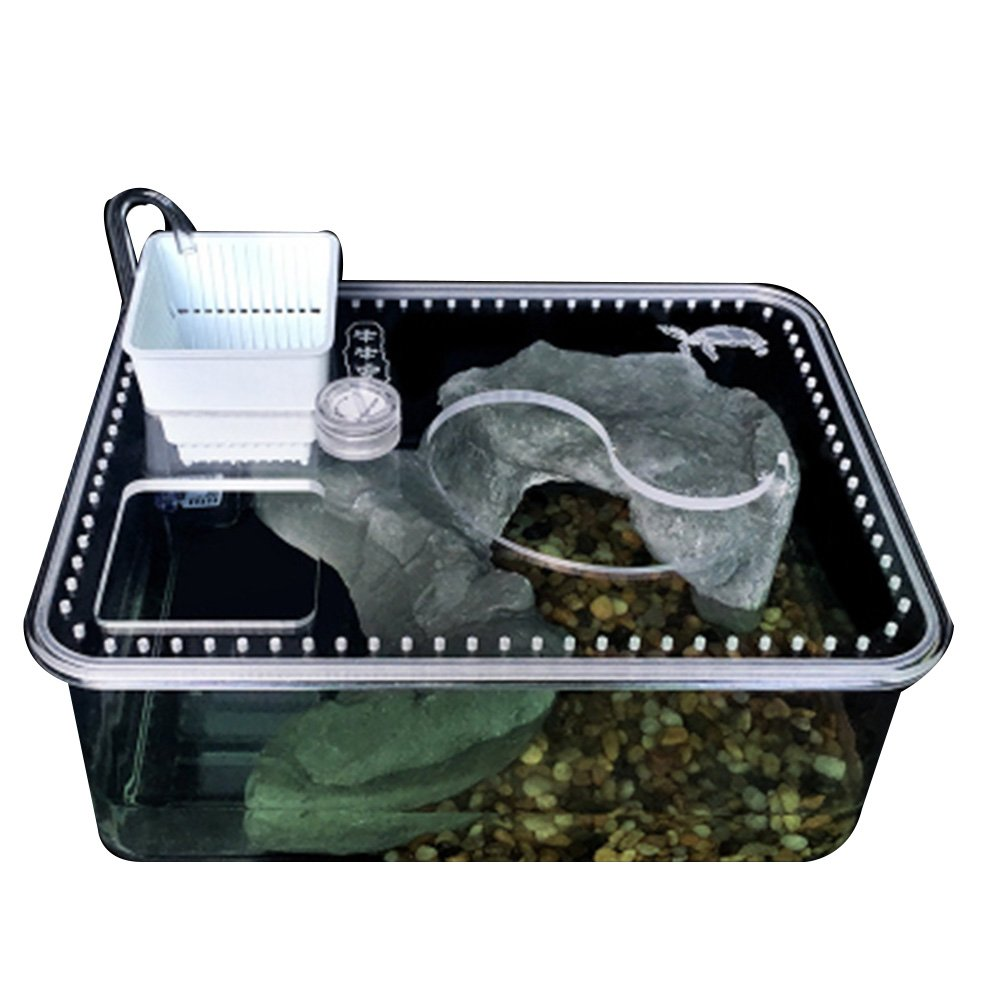 Office table fish tank, suitable for turtle, fish, reptile perfect ecological landscape box (Amphibious)