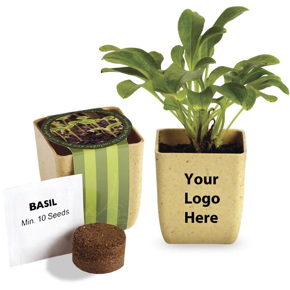 Flower Pot Set with Basil Seeds - 75 Quantity - $2.65 Each - Promotional Product/Bulk with Your Logo/Customized