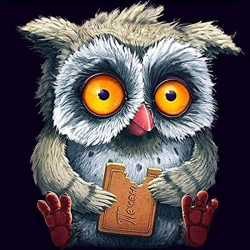 Bird Owl DIY 5D Round Diamond Painting Embroidery Cross Stitch Kits Mosaic Art