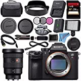 Sony ILCE7RM3/B Alpha a7R III Mirrorless Digital Camera (Body Only) FE 16-35mm f/2.8 GM Lens SEL1635GM + 256GB SDXC Card + Professional 160 LED Video Light Studio Series Bundle