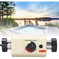 Naroote Calentador Piscina, Producto Personalizado, Producto en Stock, Mini termostato de Calentador de Agua de 3KW para bañera de Masaje para Piscina SPA Bath (EU 220V)