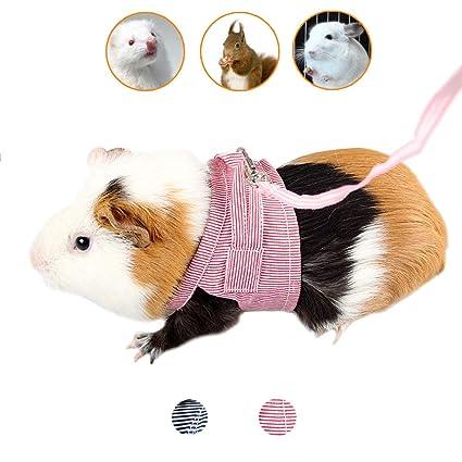 f85f1b9add50 Amazon.com : Small Pet Harness with Leash, Comfort Cotton Vest ...