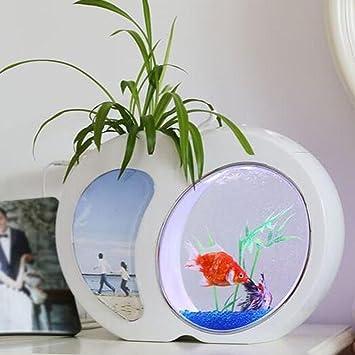 D@Qyy Mini Tanque De Peces Acuario Self Cleaning Fish Tank Bowl Conveniente Acrílico Escritorio Acuario para La Decoración del Hogar De Oficina Accesorios ...