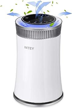 Purificador de aire Intey, purificador de aire, filtro HEPA, doble ...