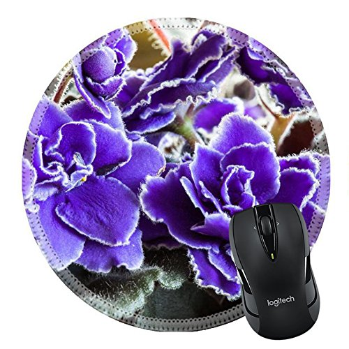 MSD Natural Rubber Mousepad Round Mouse Pad/Mat: 28133590 Small delicate purple with white fringe flowers of an African Violet houseplant - African Violet Blooms