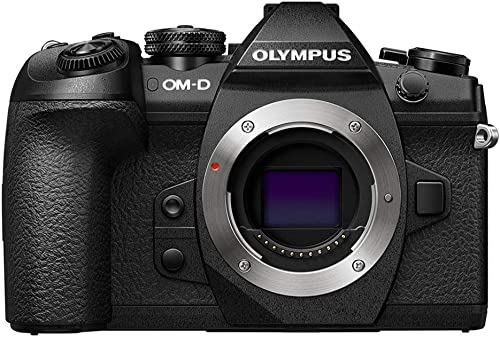 Olympus OMD E-M1 Mark II best camera for safari